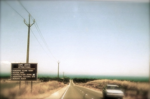 Danny James blog Adelaide pic 2
